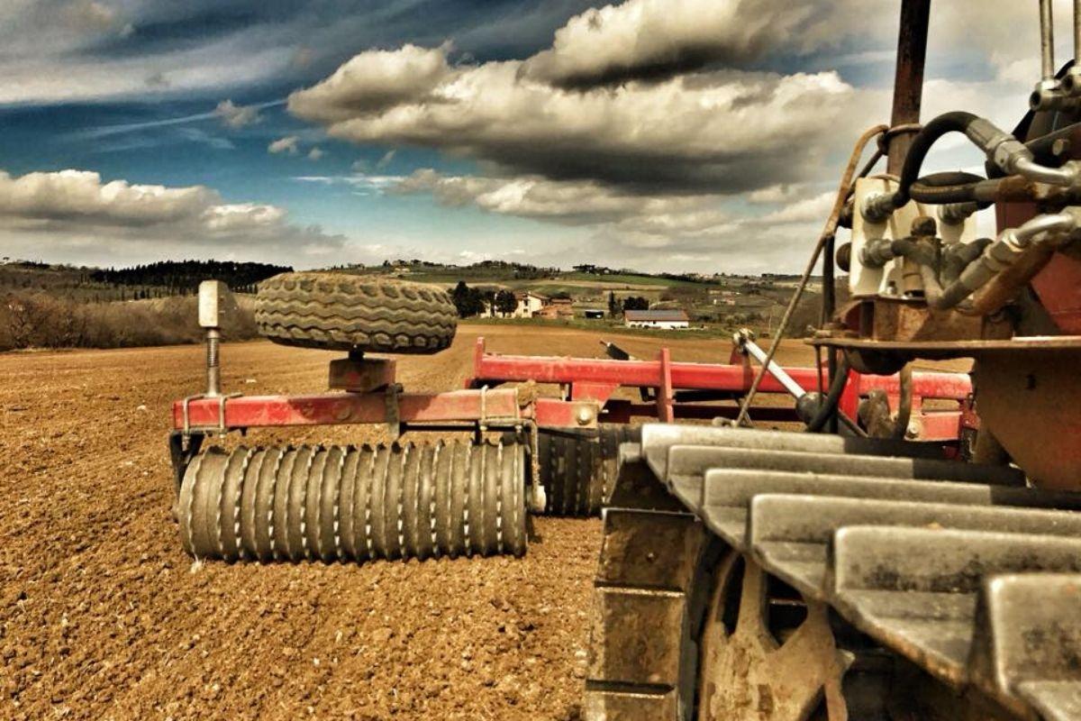 Azienda agricola Il favaio - Prodotti biologici a km0
